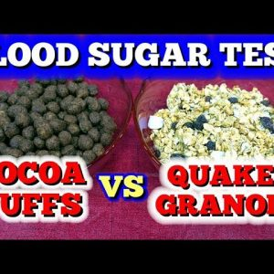 Blood Sugar Test: Cocoa Puffs vs Granola Cereal