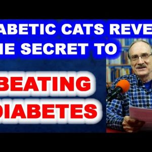 Diabetic Cats Reveal How To Beat Diabetes!