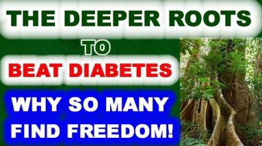 The Deeper Roots of Beat Diabetes. Why So Many Find Deliverance.